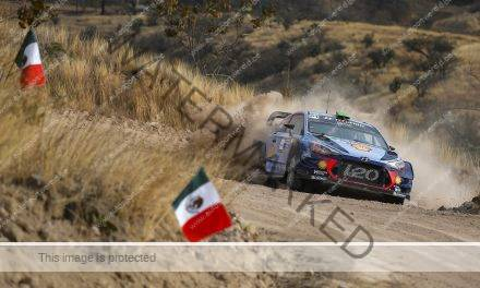 Video: aftellen naar WRC Mexico met Thierry Neuville