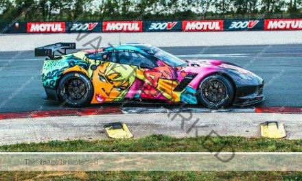 Ronduit schitterende Art Car Corvette van Larbre