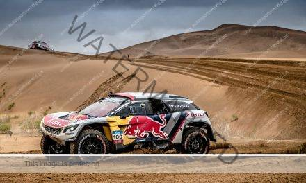 Cyril Desprès wint Silk Way Rally