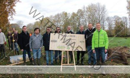 BRC: Superstage plant bos voor Ypres Rally